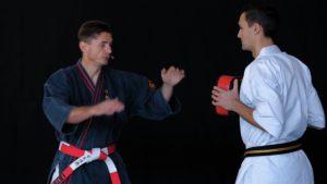 concept nihon tai jitsu
