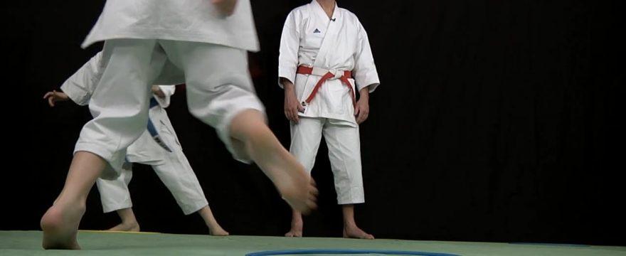karate pour les enfants - pédagogie avec michel kervadec