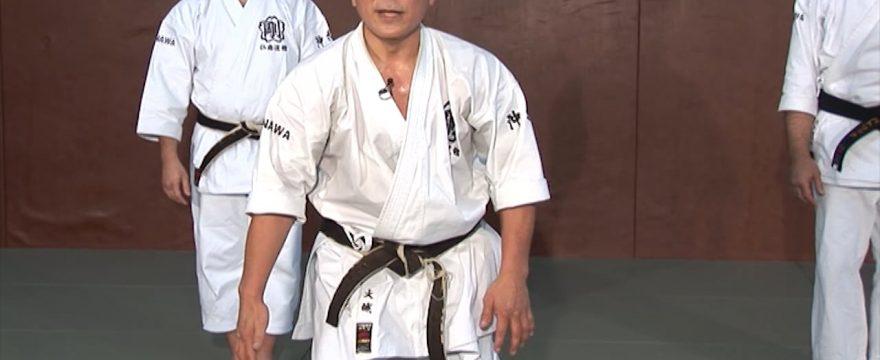 okinawa karate goju ryu kata