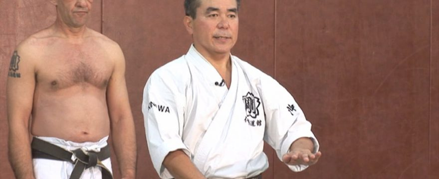 karate goju-ryu 1er dan video