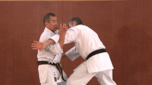 okinawa karate video streaming vod