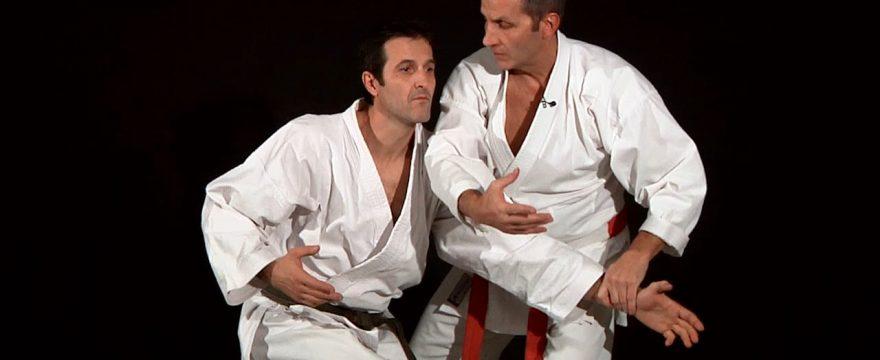 bunkai 2ème dan karate shotokan bernard bilicki