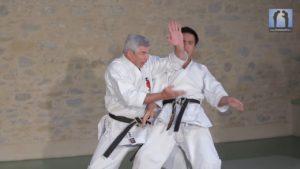 karate bunkai ceinture noire