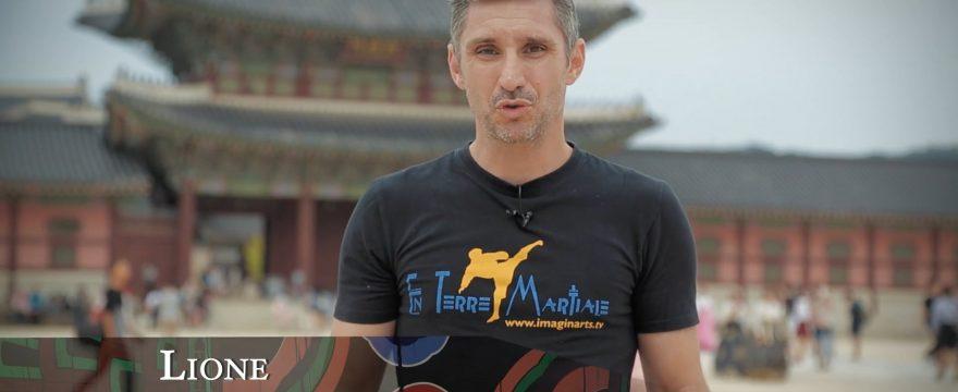 documentaires arts martiaux coréens