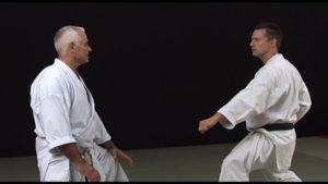 bunkai karate 2ème dan