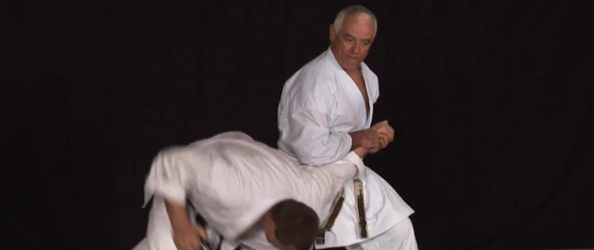 bunkai karate 3ème dan