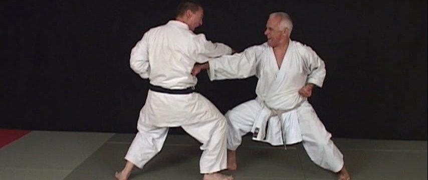 karate bunkai 1er dan