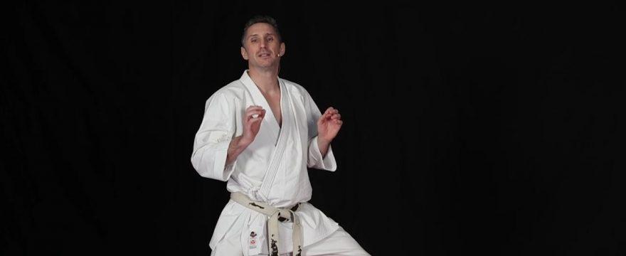 kihon karate