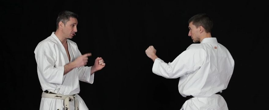 kihon-ipppon-kumite-video-verte