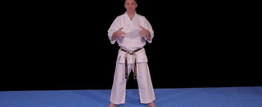 kihon karate avec lionel froidure