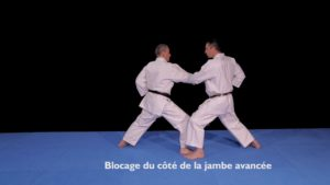 kihon karate ceinture jaune osae uke