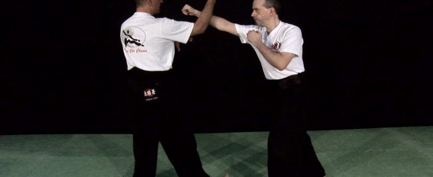 taichi yang forme 108 mouvements 2