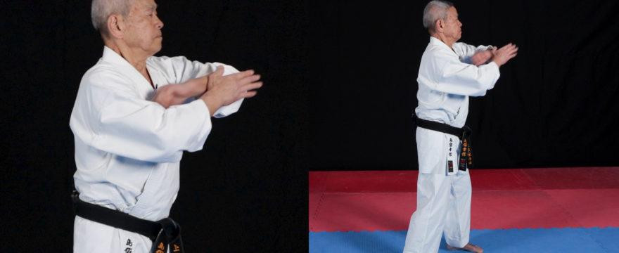 hojo undo karate uechi ryu shimabukuro sensei