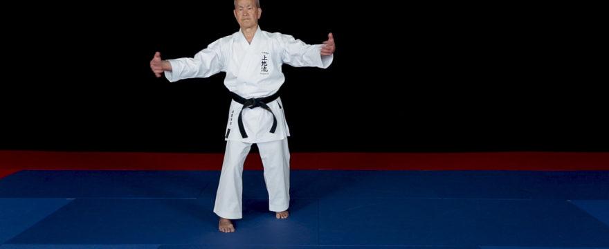 kanchin kata bunkai karate uechi ryu