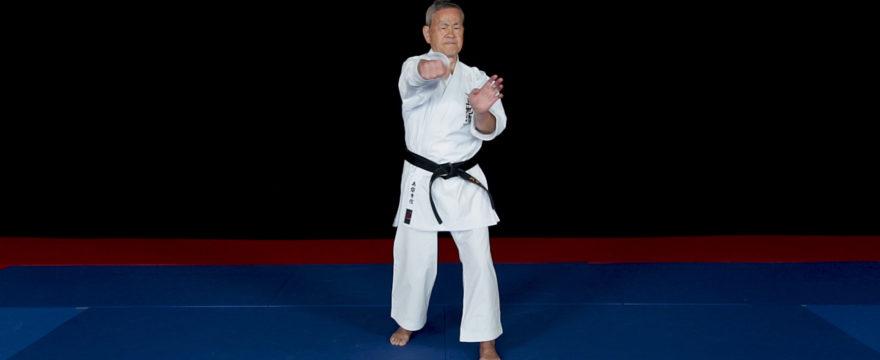 kanshiwa kata karate bunkai