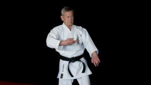 sanseiryu kata bunkai karate uechi ryu shimabukuro sensei