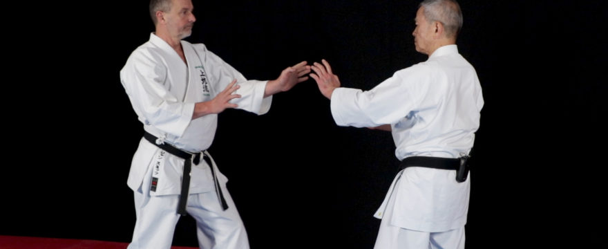 seiryu kata bunkai karate uechi ryu