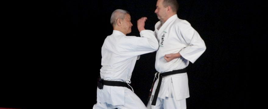 seisan kata bunkai karate uechi ryu