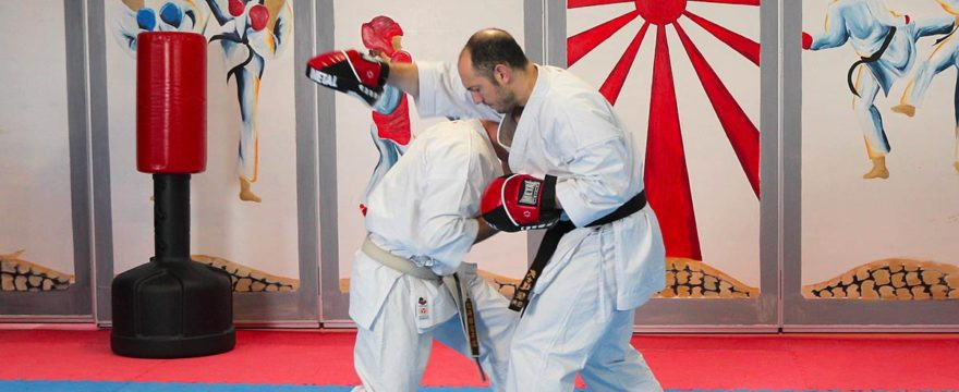 pattes-ours-karate