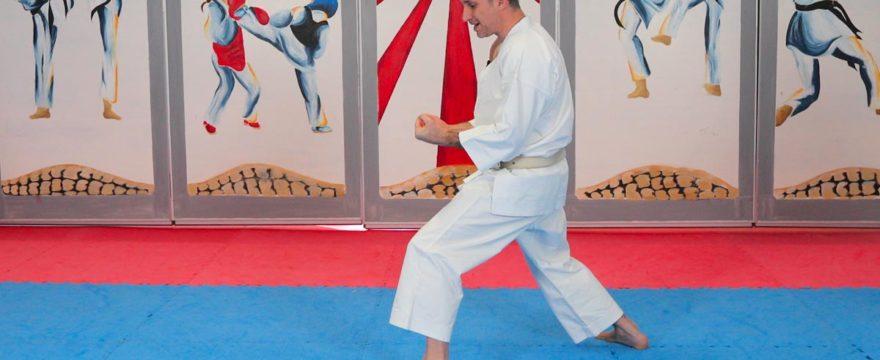 vidéo kinesthesie karate avec lionel froidure