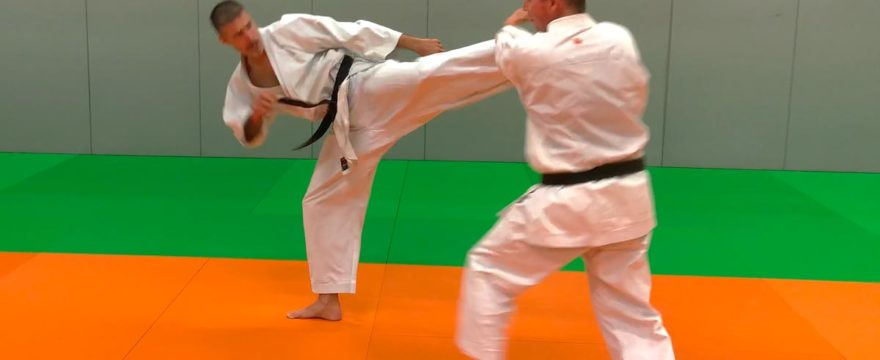 creer-competence-karate-pedagogie