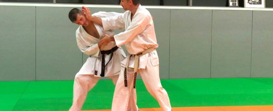 jitte-empi-bunkai-karate-video
