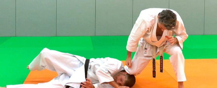 shiho-nage-karate-bunkai